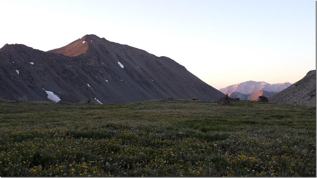 Mt Columbia