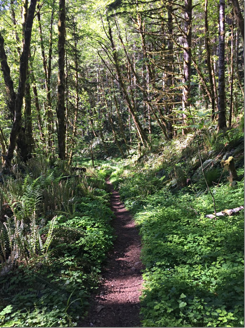Green Trails!